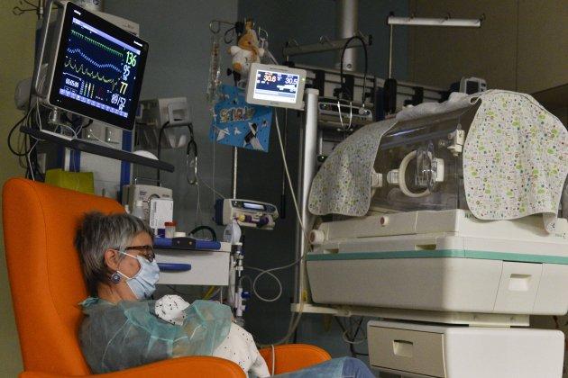 projecte placenta artificial fundació la Caixa