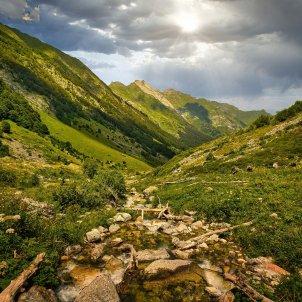 Camins Pirineus 1