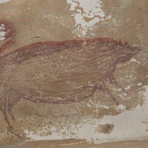 porc indonesia pintura rupestre @EFE