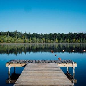 lago arboles unsplash