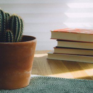 libros   unsplash (2)