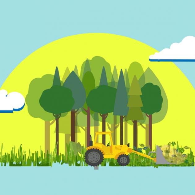 Branded biomassa bcn smart rural