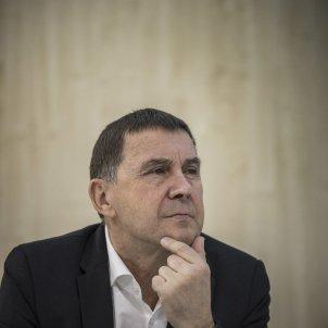 Arnaldo Otegi - Sergi Alcàzar