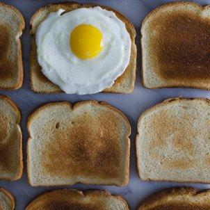 Huevo y tostadas