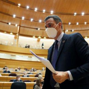 pedro sanchez control senat EFE