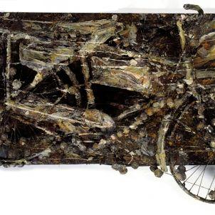 Coetzee - Celestial Bicycle I b