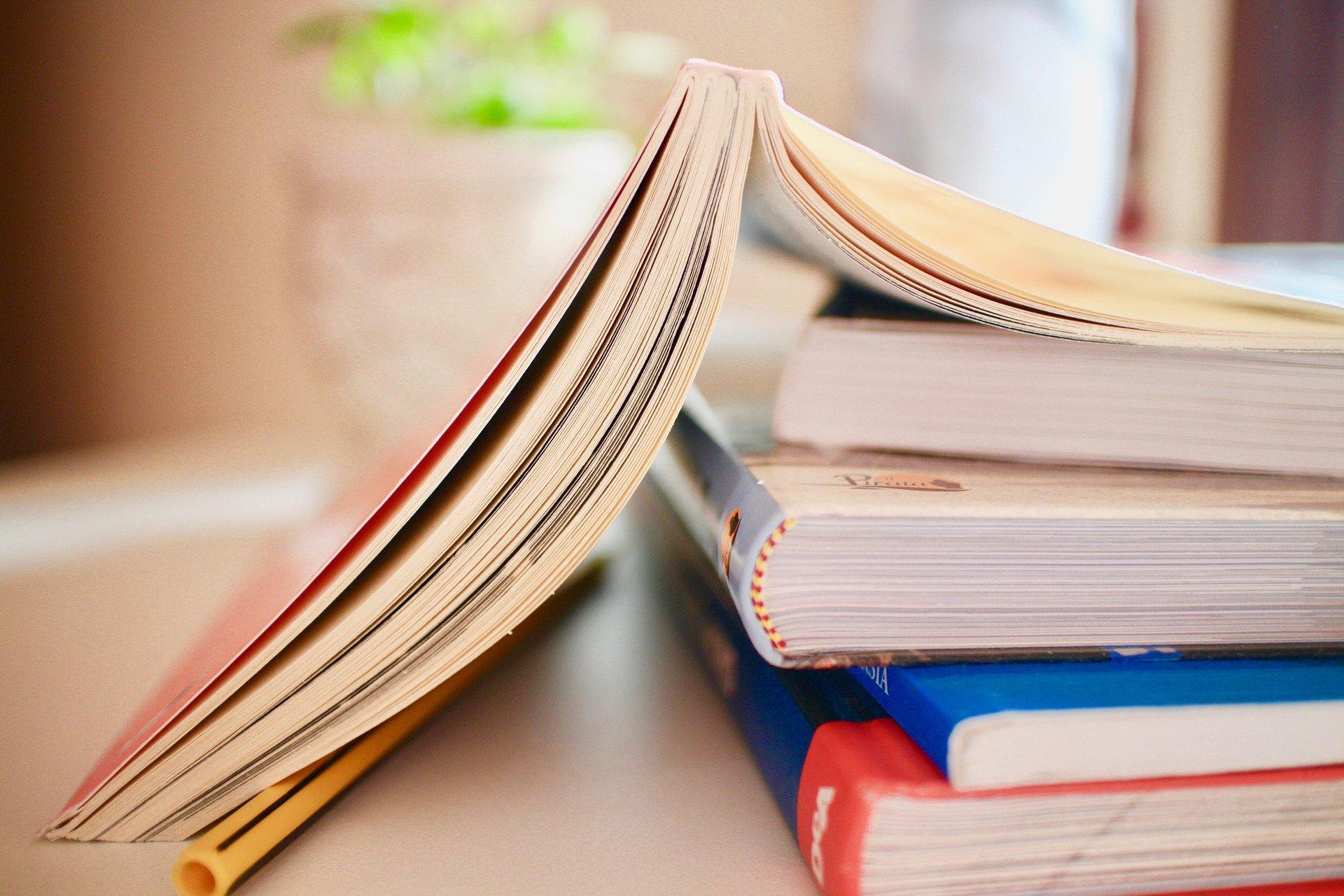 llibres lectura PIXABAY