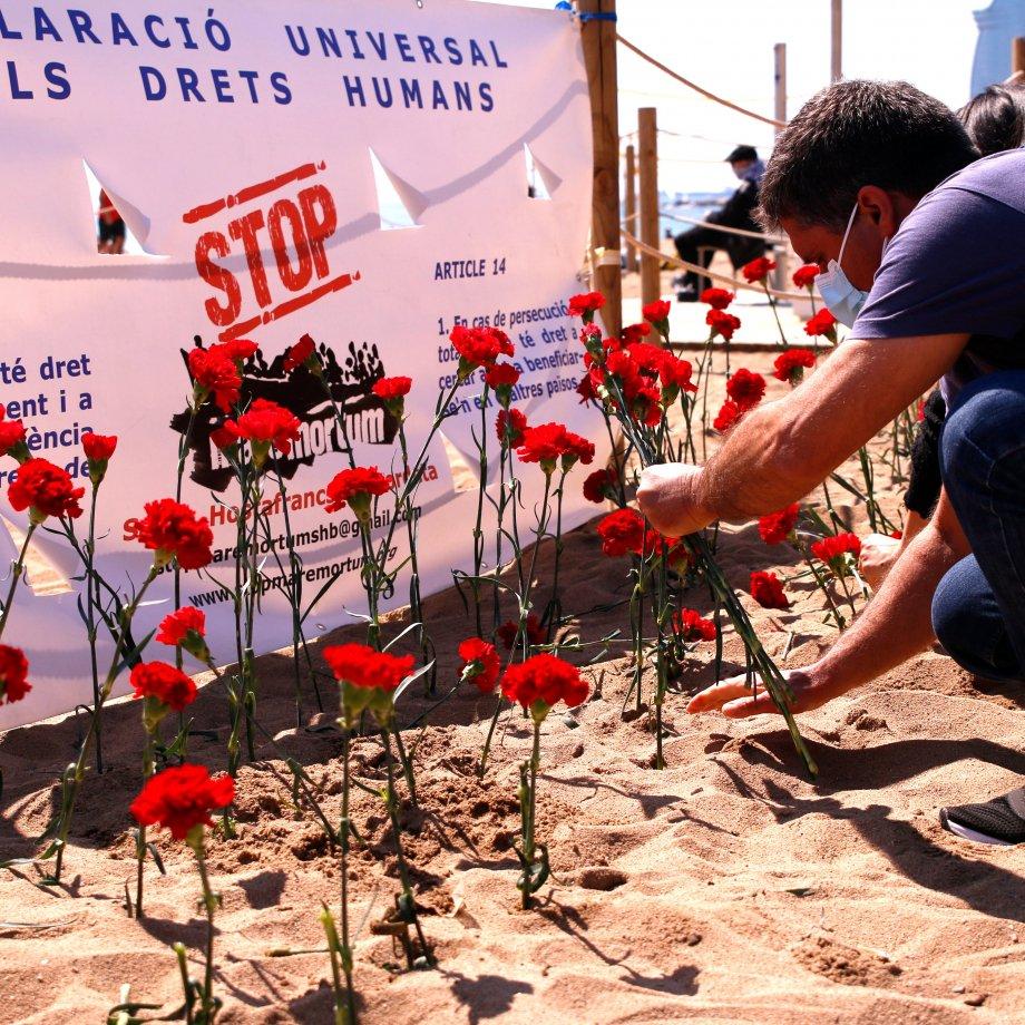Stop mare mortum plantada claveles playa acn
