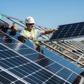 placas solares   unsplash