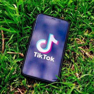 TikTok / Pixabay