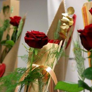 roses acn