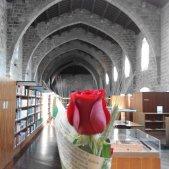 Sant Jordi Dia Llibre i Rosa Biblioteca de Catalunya