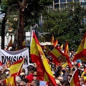 manifestacion madrid bandera preconstitucional nicolas tomas