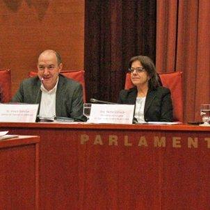 Sanchis Comissio Corpo   Parlament