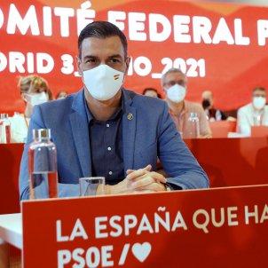 Dánchez Comité Federal PSOE EFE