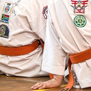 Arts marcials nens   PIXABAY