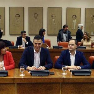 grup parlamentari socialista