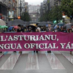 manifestacio asturia llengua asturiana efe