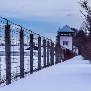 genocidi Dachau Pixabay