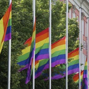 Banderes gais / EFE