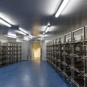 Sala grans catastrofes forense autopsia   Sergi AlcàzaR
