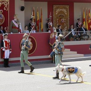 Dia Forces Armades ESP 2017 (Efe, Pepe Zamora)
