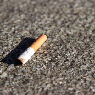 tabac meineresterampe pixabay