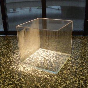 Condensation Cube (Hans Haacke)