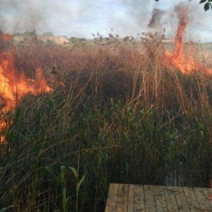 incendi Sant Llorenç de Montgai
