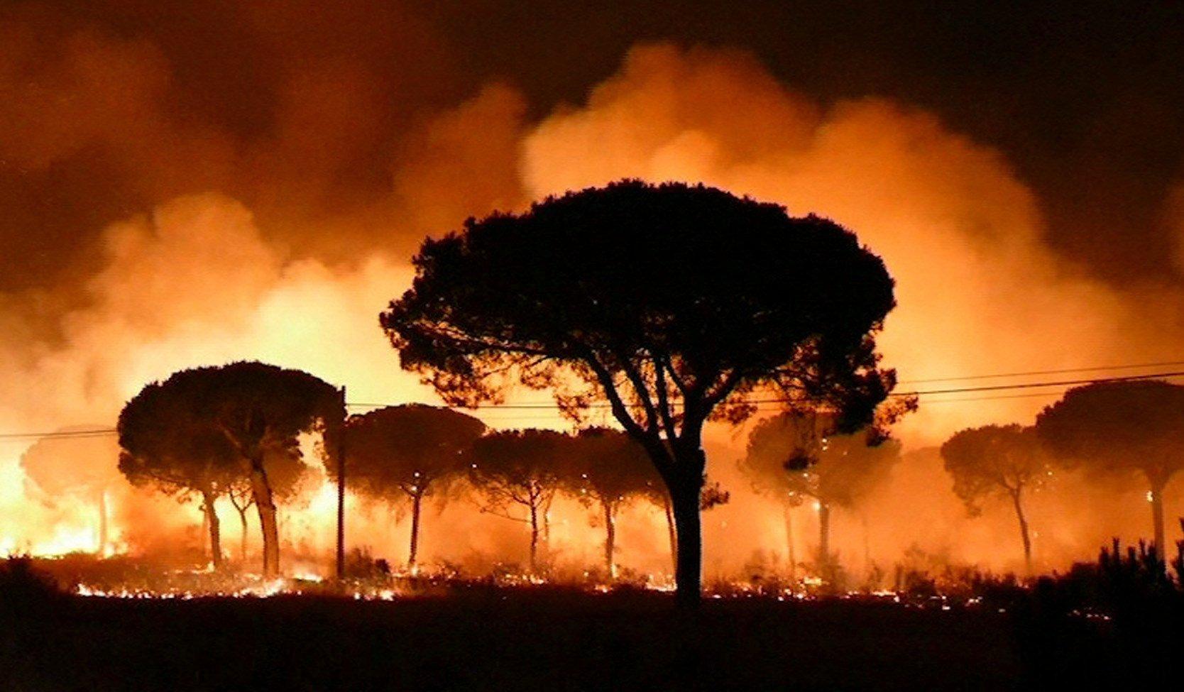 incendi moguer huelva efe