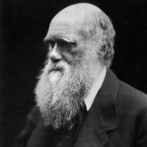 darwin wiki