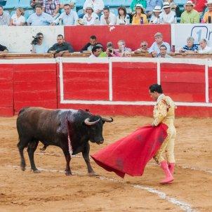Corrida de toros / Viquipèdia