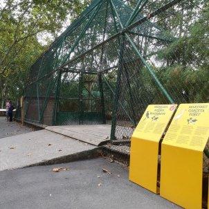 gabia zoo barcelona ocells europa press