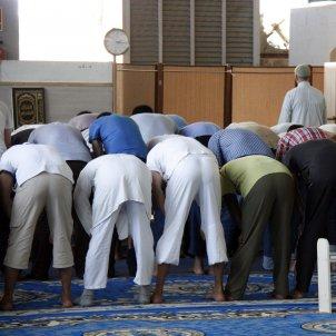 Mesquita resant - ACN
