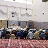 mesquita acn