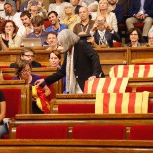 Banderes PP Parlament Martínez - Sergi Alcàzar