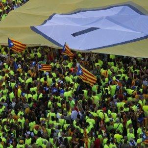 Samarretes 11S Diada Independencia - Sergi Alcàzar