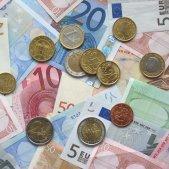 euros wiki