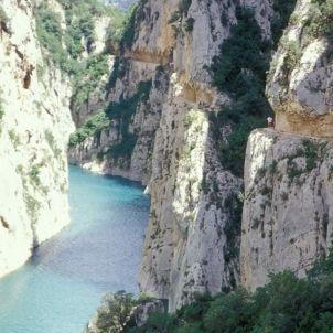 Mont-Rebei   Selbach, Arthur F. aralleida