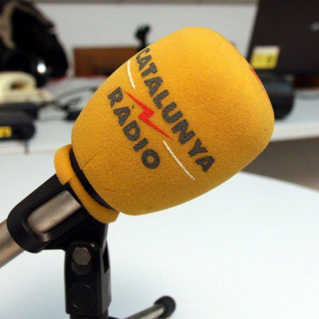 Image result for micròfon groc