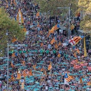 manifestacio alliberament Jordis  i contra el  155 foto laura gomez08