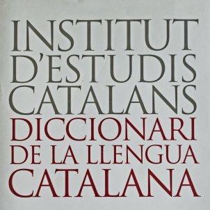 Diccionari de la llengua catalana de l'Institut d'Estudis Catalans neologisme