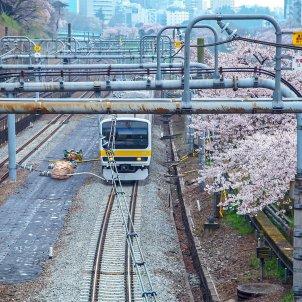herencia japonesa tren pixabay