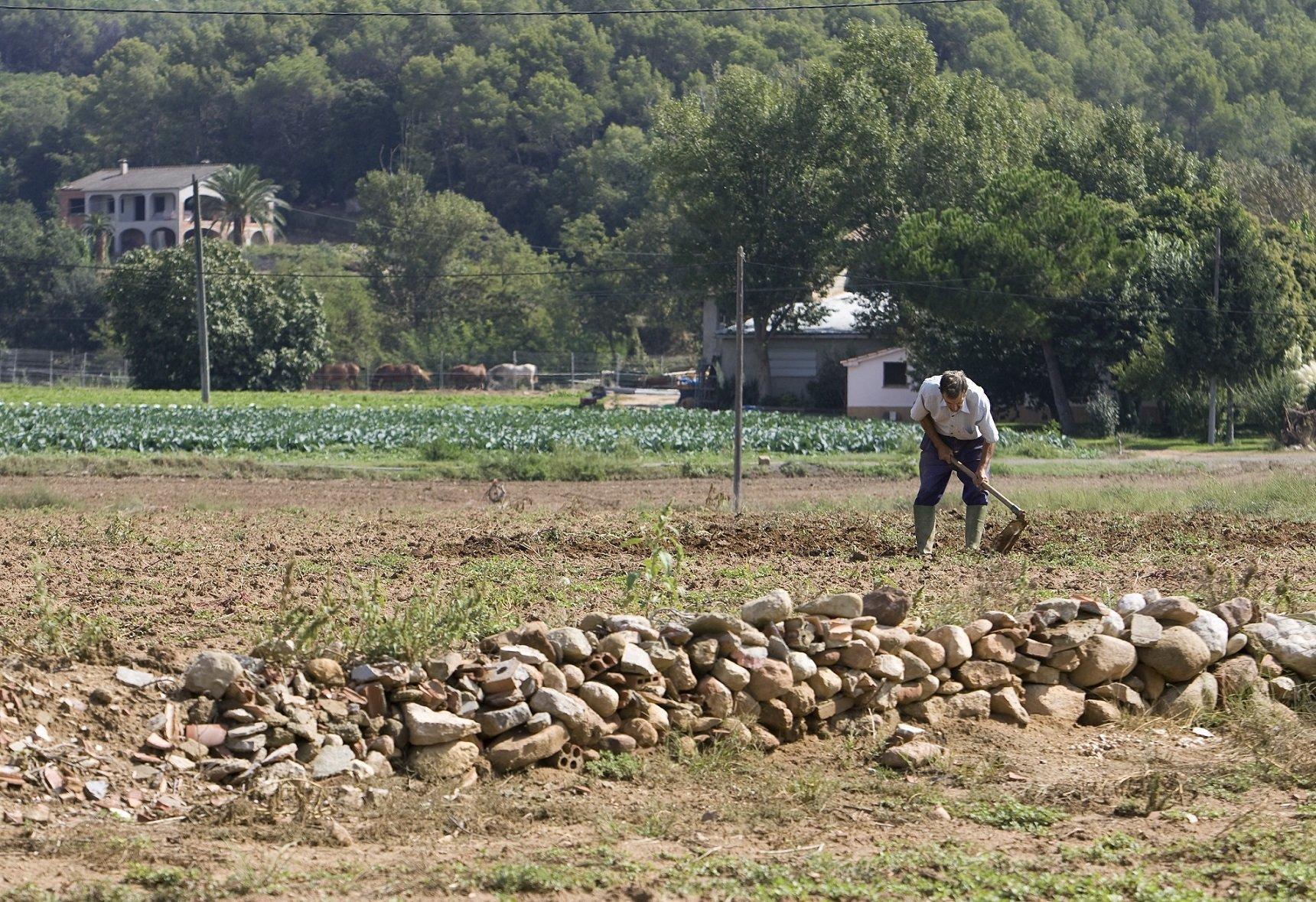 ajudes socials rural OSlacaixa