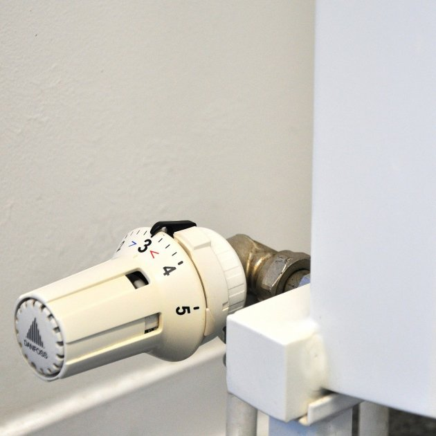 thermostat 250557 1920