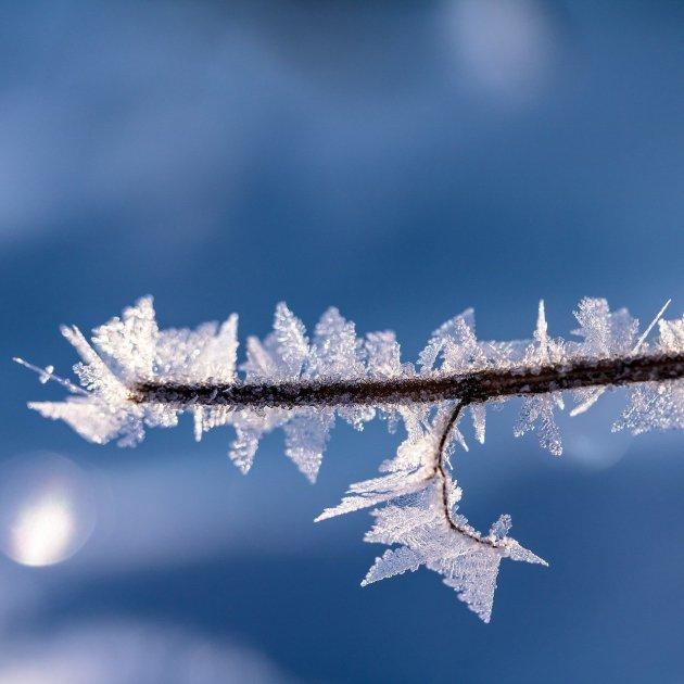fred gel hivern - pixabay lliure