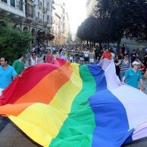Homosexualidad Europa Press