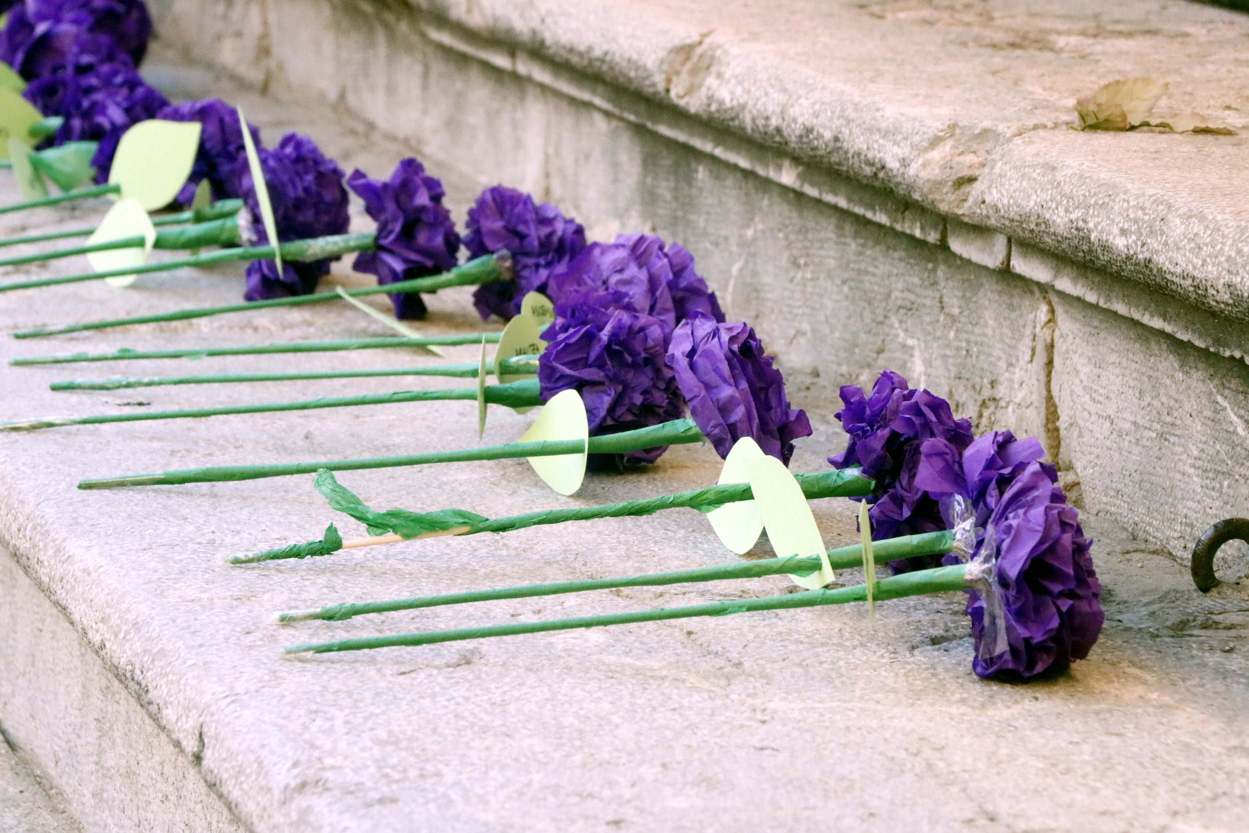 flors violència masclista acn