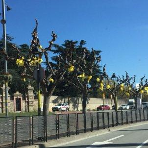 llaços grocs barri Alemany 5    Gemma Liñán
