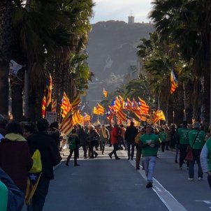 mani 11 M passeig de colom estelades   Marta Lasalas